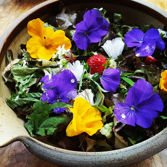 Orlaith Murphy - 'Petal Power – A story of Edible Ornamentals' @ Online Zoom Meeting